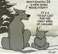 NY Reso cartoon
