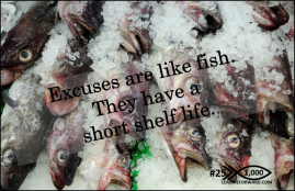 1000 Tips 25 excuses.fish