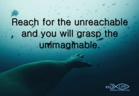 1000 Tips 33 reach unimaginable