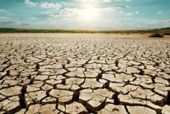 dry-season-drought